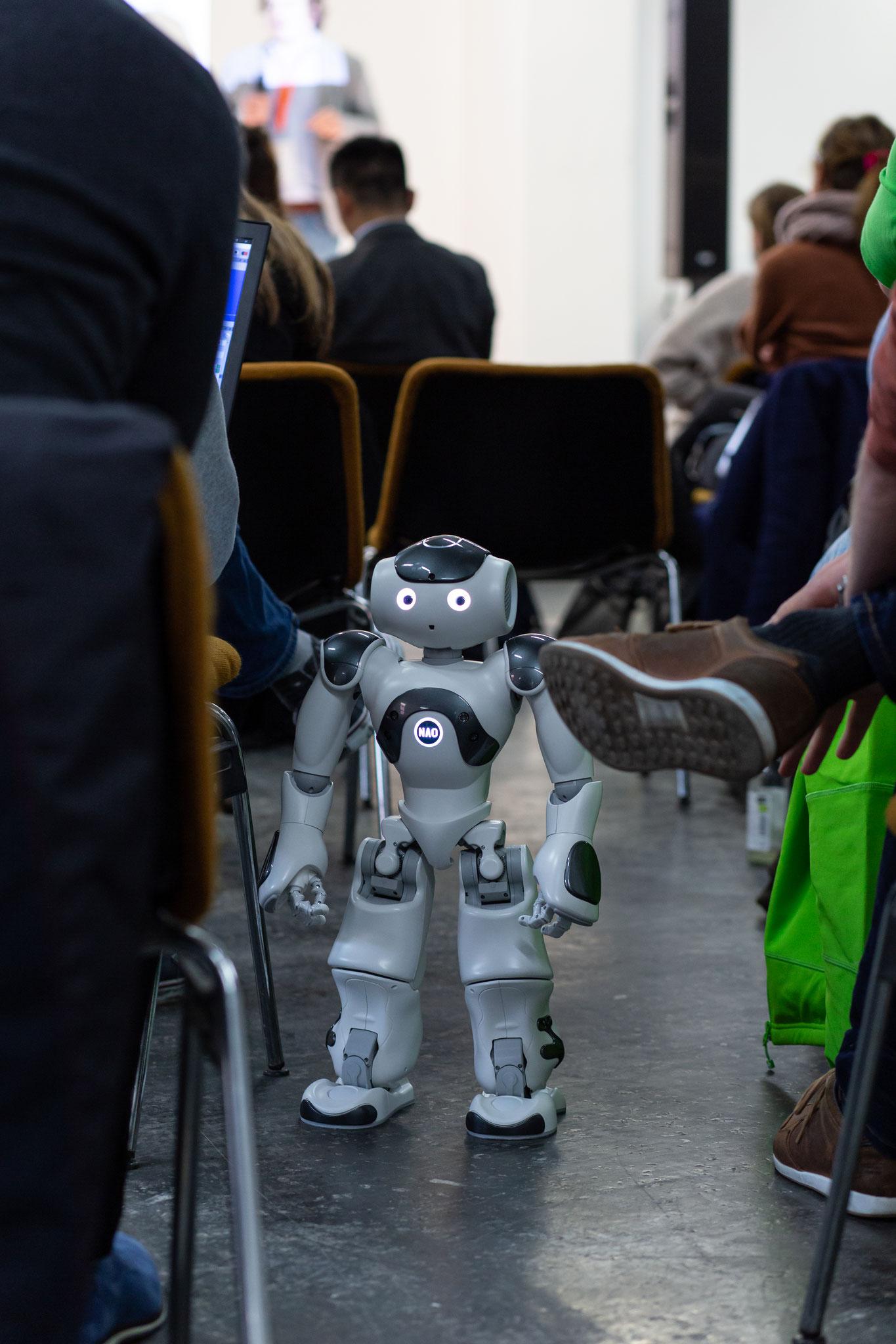 HAP 2020 - Roboter für Altern und Pflege